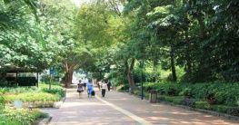 Der Kowloon Park